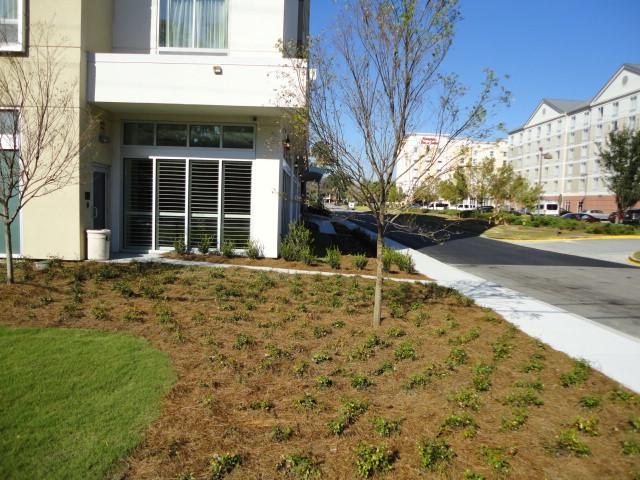 commercial landscaping services savannah ga elp landscape