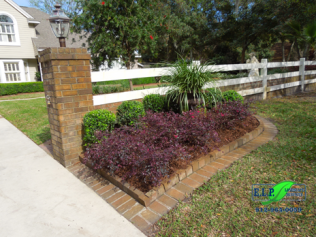 Plant Bed Maintenance